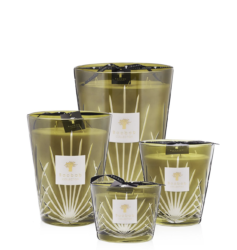 Bougie Palm Springs Baobab Collection